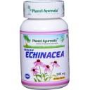 Planet Ayurveda uztura bagātinātājs Indian Echinacea (andrographis), 60kaps.