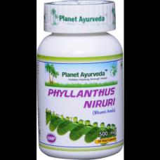 Planet Ayurveda uztura bagātinātājs Phyllanthus Niruri (filants), 60kaps.