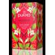 Pukka BIO tēja - uzmundrinošā Revitalise, 20pac.