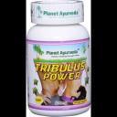 Planet Ayurveda uztura bagātinātājs Tribulus Power (tribulis), 60kaps.